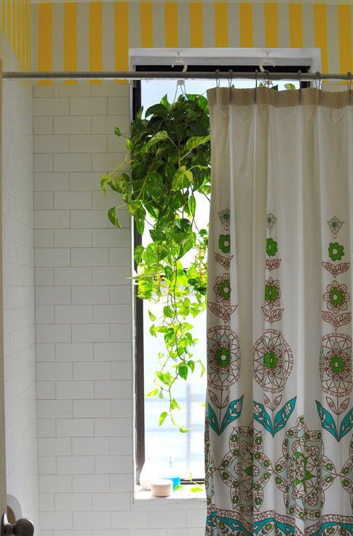 Add some green with a pathos plant - Photo: Scheer & Co. Interior Design
