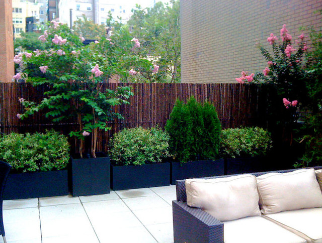 bamboo fence terrace deck paver patio