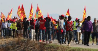 Revival Decree, the laborers on strike against the terms of the regularization: