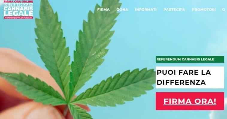 Cannabis legale, in 4 giorni raccolte 420 mila firme per il referendum. Si avvicina l'obiettivo 500 mila, ben prima della data limite