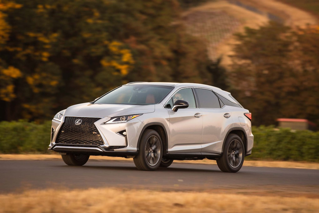 2017 Lexus RX Reviews and Rating