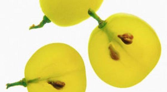 Экстракт семечки винограда