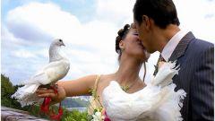 Как оригинально поздравить с днем свадьбы как поздравить ...