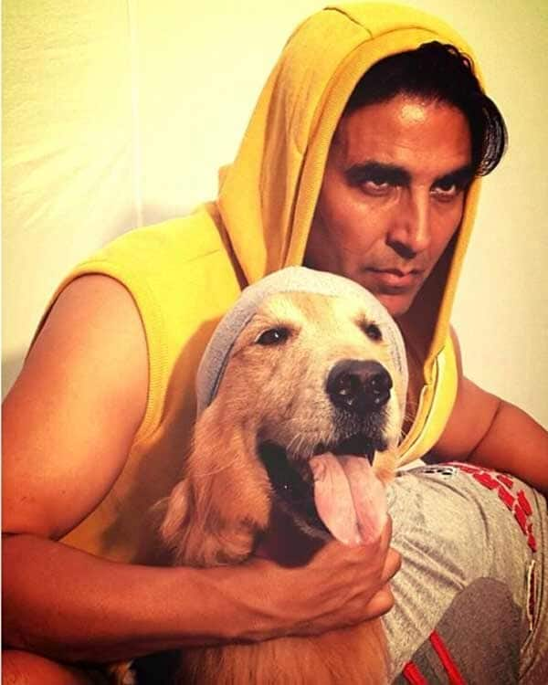 Image result for akshay kumar puppy