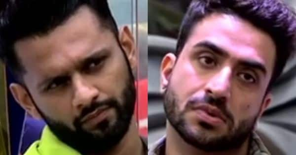 Aly Goni and Rahul Vaidya are sidekicks of one another, say fans – view poll result