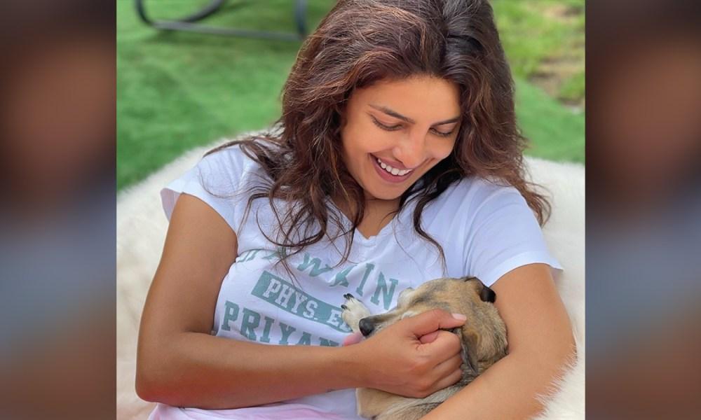 Priyanka Chopra Is Happy To Reunite With Her Furry Friends Diana, Panda And Gino (See Pics) | LatestLY
