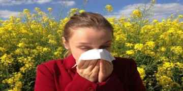 Chinese pneumonia outbreak: Some findings about this mysterious virus