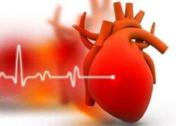 Keep your heart wholesome: Tips to reduce cholesterol levels naturally