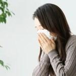 秋の花粉症の原因と症状は?対策は春の花粉症と違う?