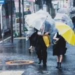 台風でも会社に行くべき?休むときの判断と通勤対策