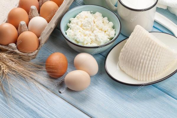 Сметана, молоко, сыр, яйца и йогурт — Стоковое фото ...