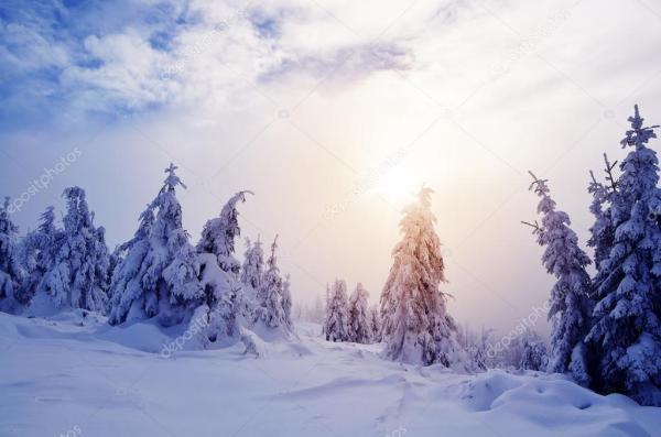 Зимний пейзаж с лесом горы — Стоковое фото © Kotenko #58785873