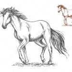 Running White Horse Sketch Portrait Stock Vector C Seamartini 122473764