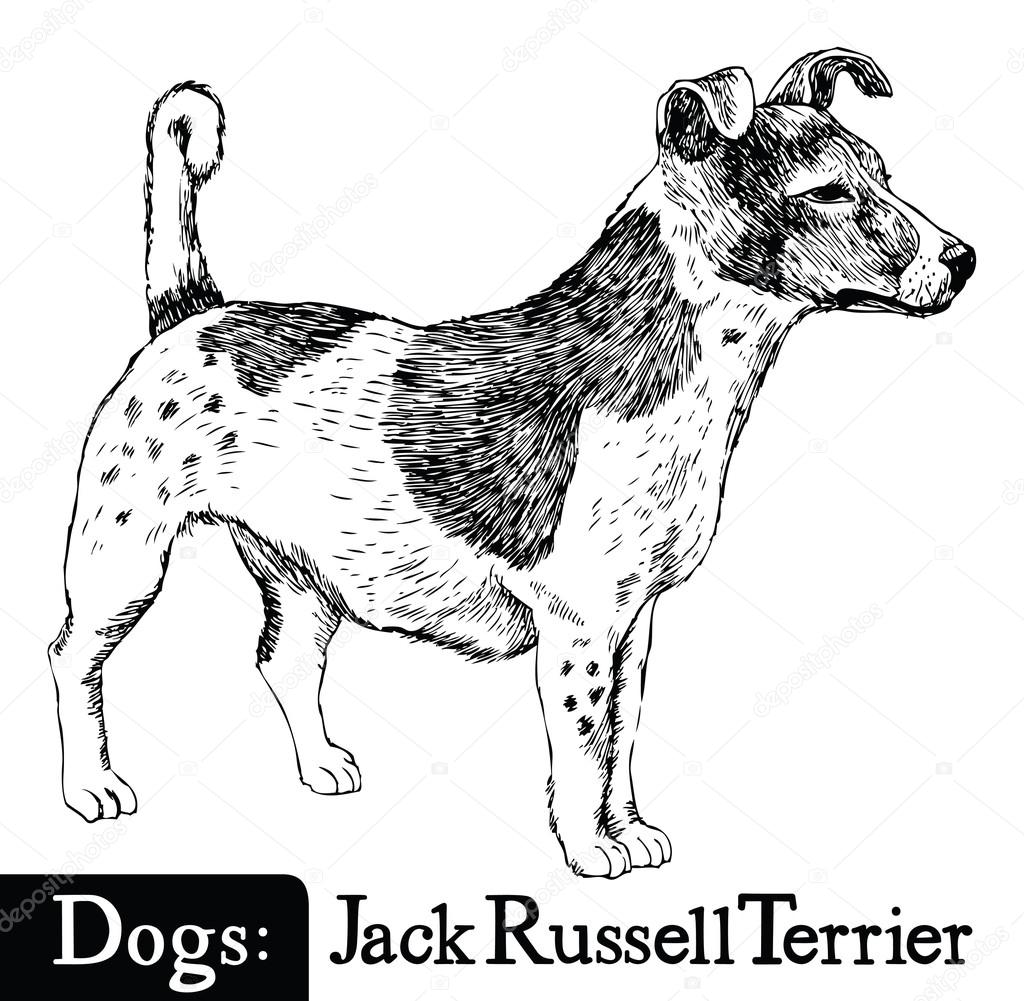 Russell The Sheep Coloring Page