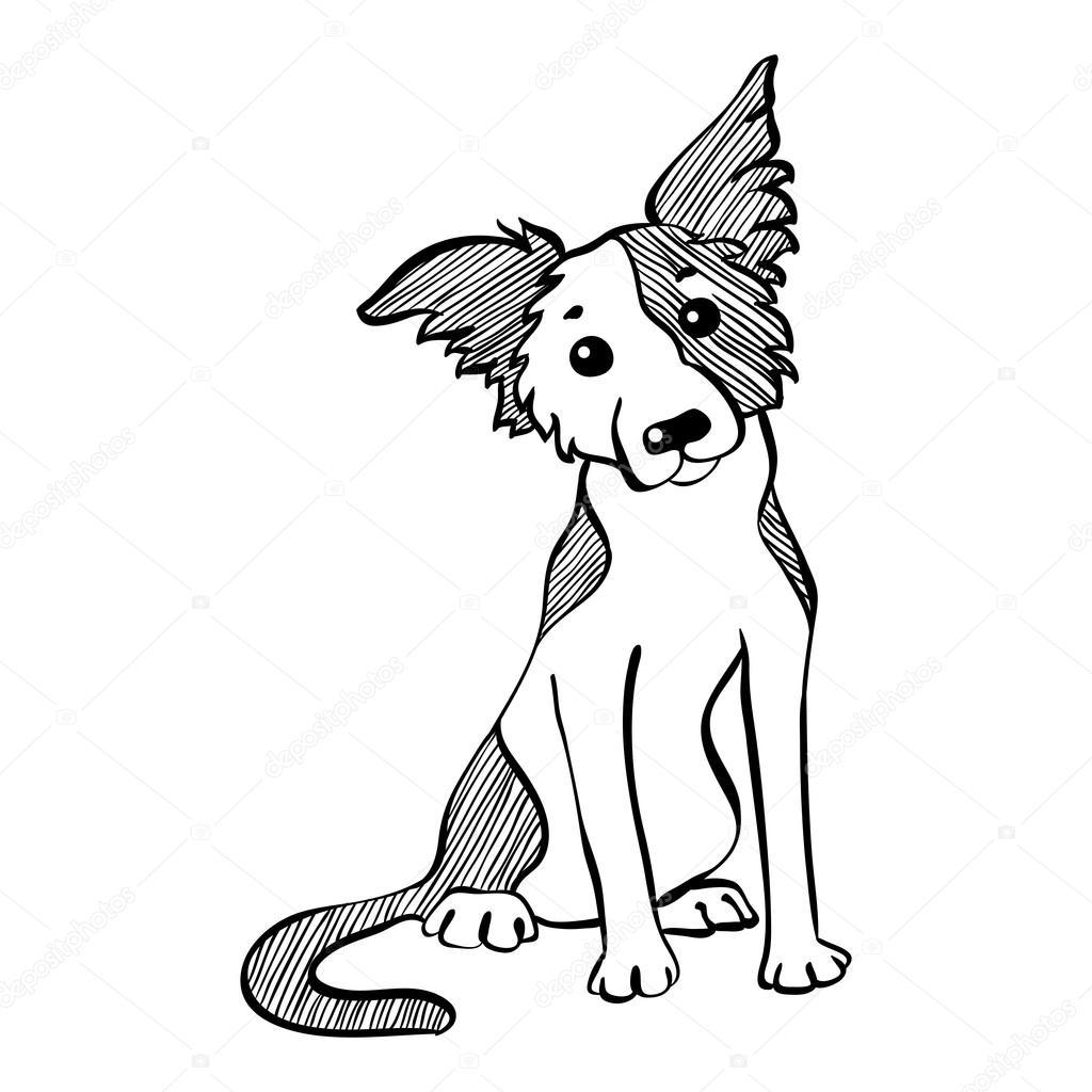 Vetor Desenho Engracado Border Collie Cachorro Sentado