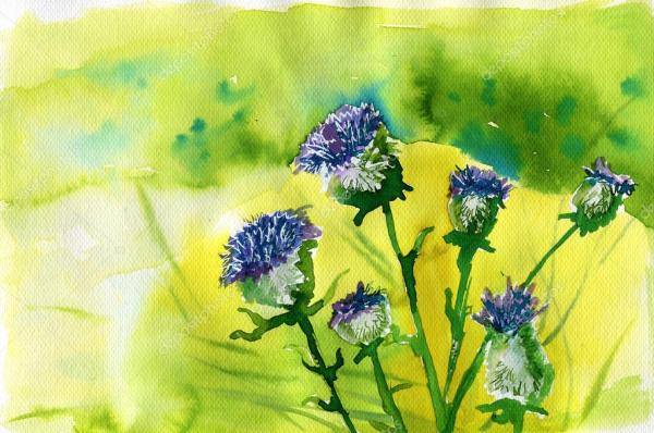 Акварельные иллюстрации, изображающие Весенние цветы на ...
