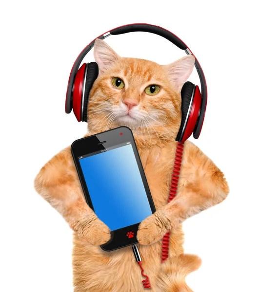 ᐈ Логотип кот с зелеными глазами в наушниках фотографии ...