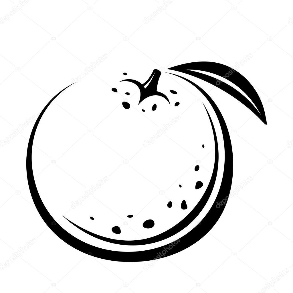 Fruta Laranja Desenho De Contorno De Vector Preto