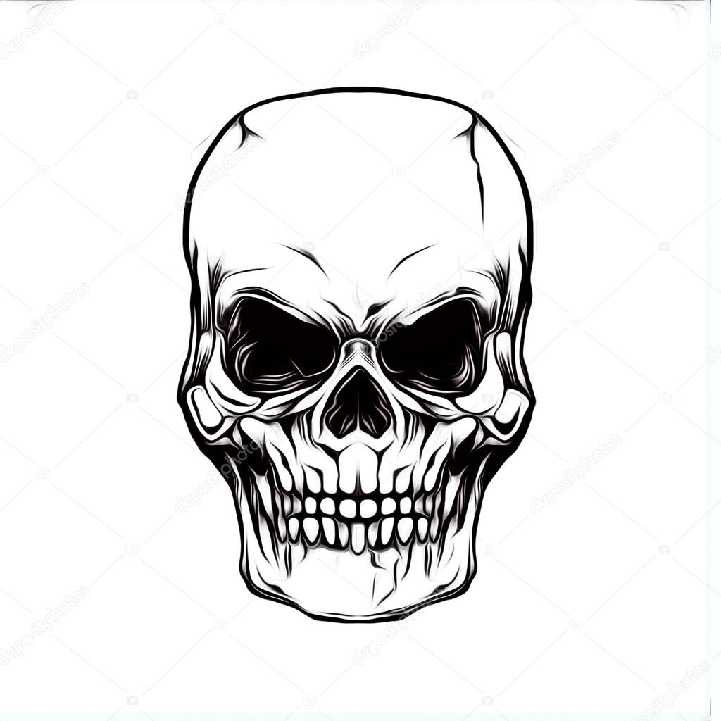 Ilustracao Do Cranio Mal