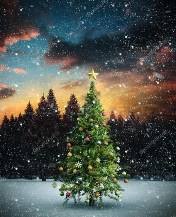 Сложное изображение рождественской елки — Стоковое фото ...