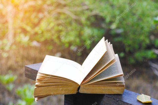 Фондовый Фото старая книга на скамейке в Форест-Парк ...