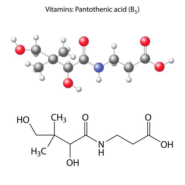 Formule développée de l'acide pantothénique (vitamine B5 ...