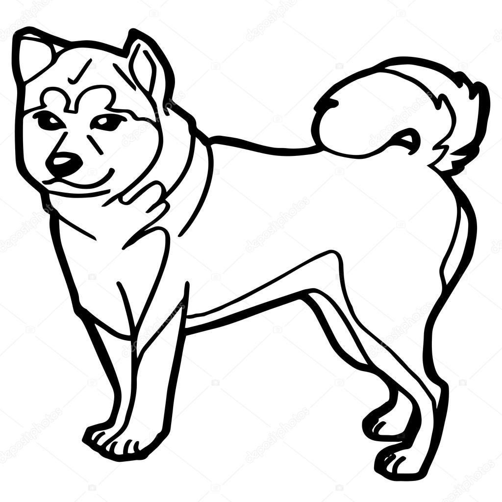 Dibujos Animados Para Perros