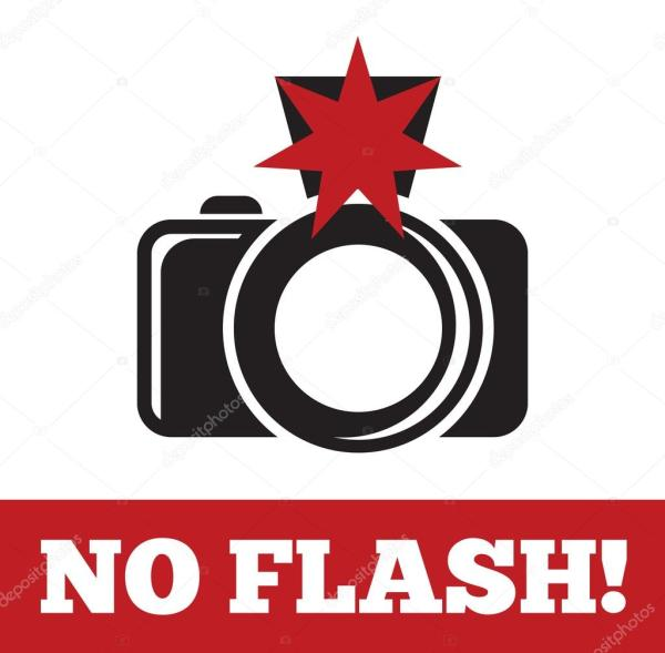 No flash sign — Stock Vector © branchecarica #58701823