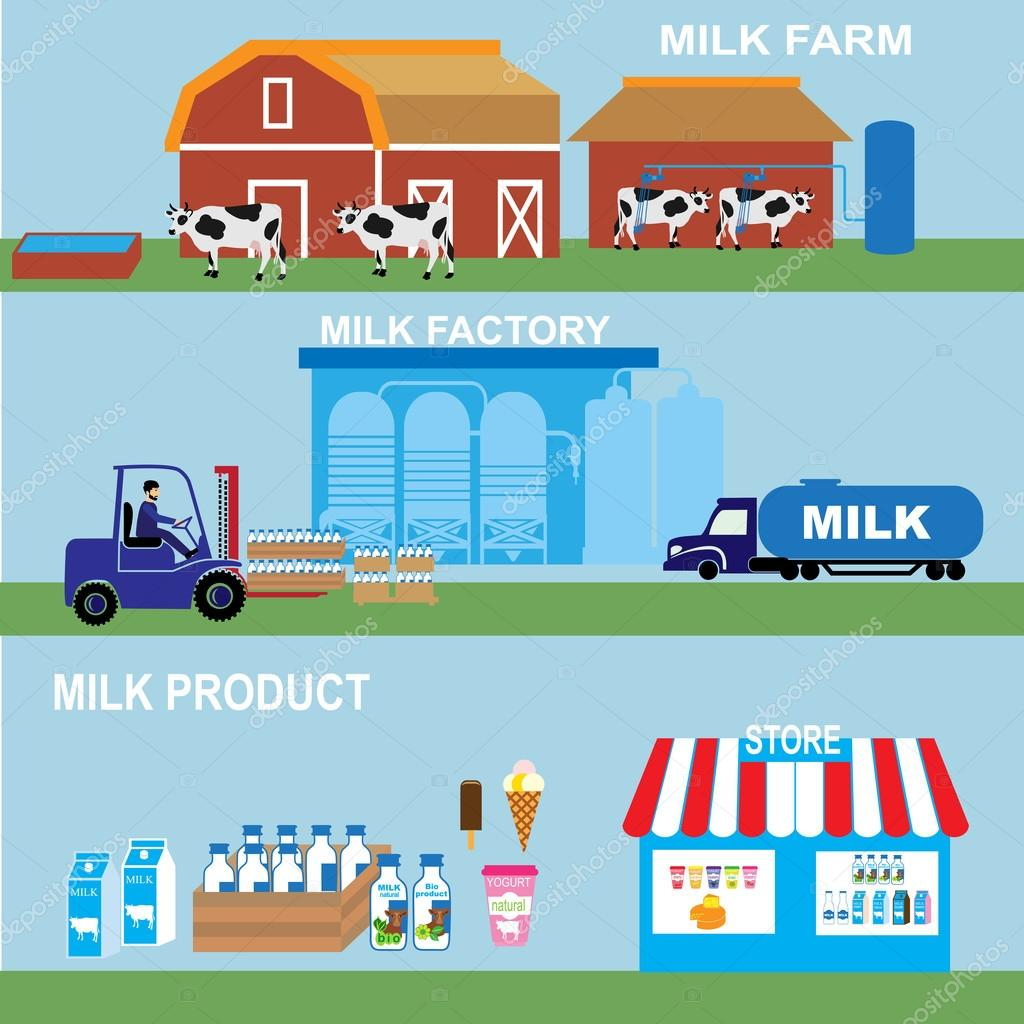 Production Stages And Processing Of Milk