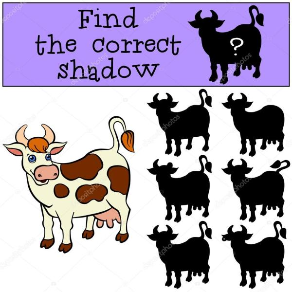 find the cow # 16