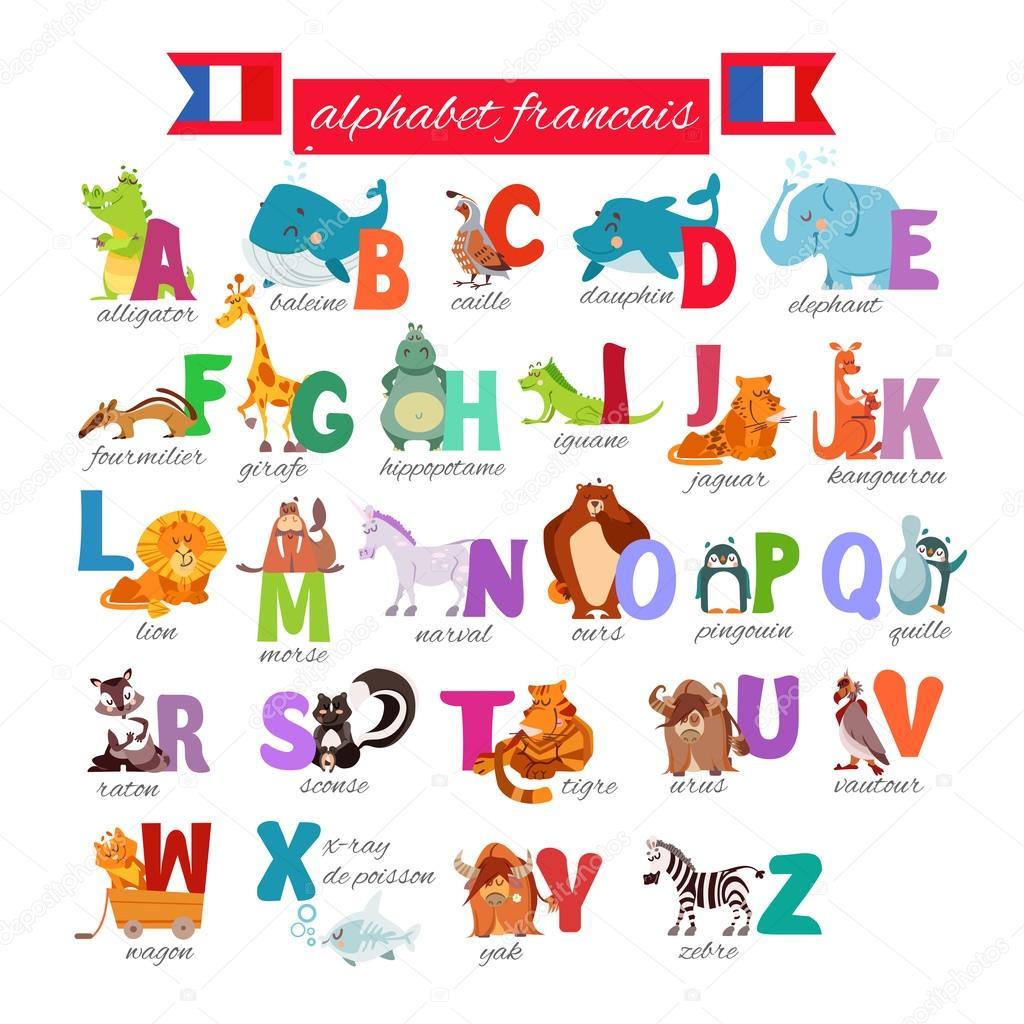 Franse Geillustreerde Alfabet Metren