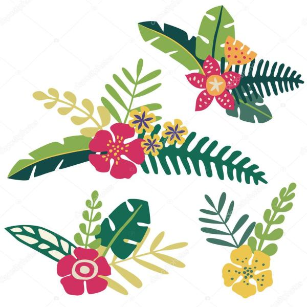 Тропические цветы вектор Векторное изображение