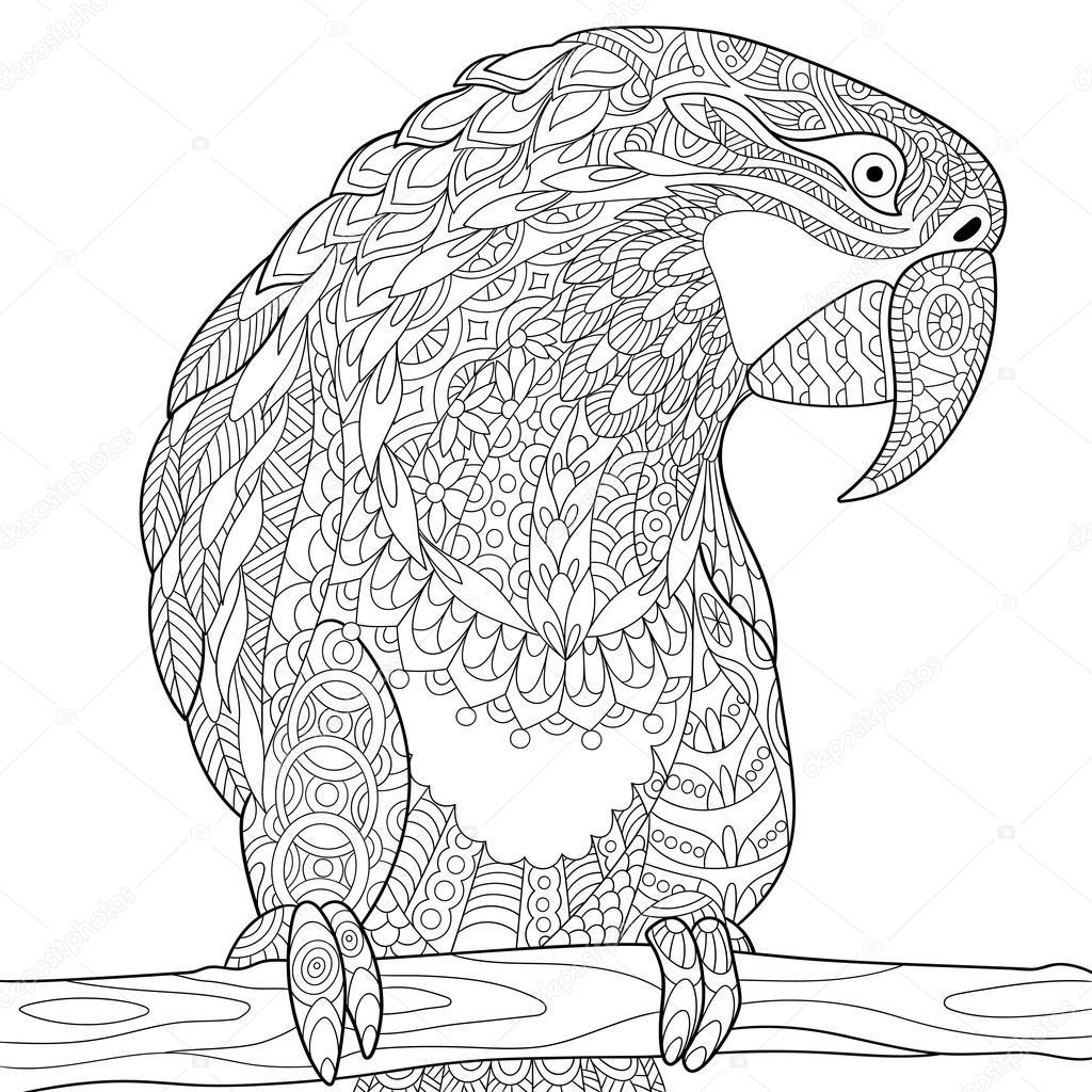Zentangle Stylized Parrot
