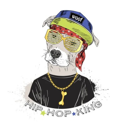Image result for stock hip hop photo