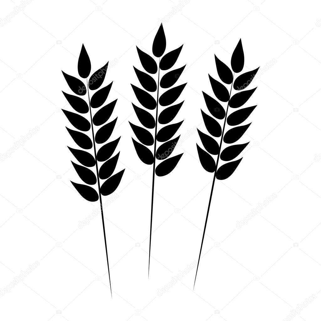 Wheat Icon Vector Illustration