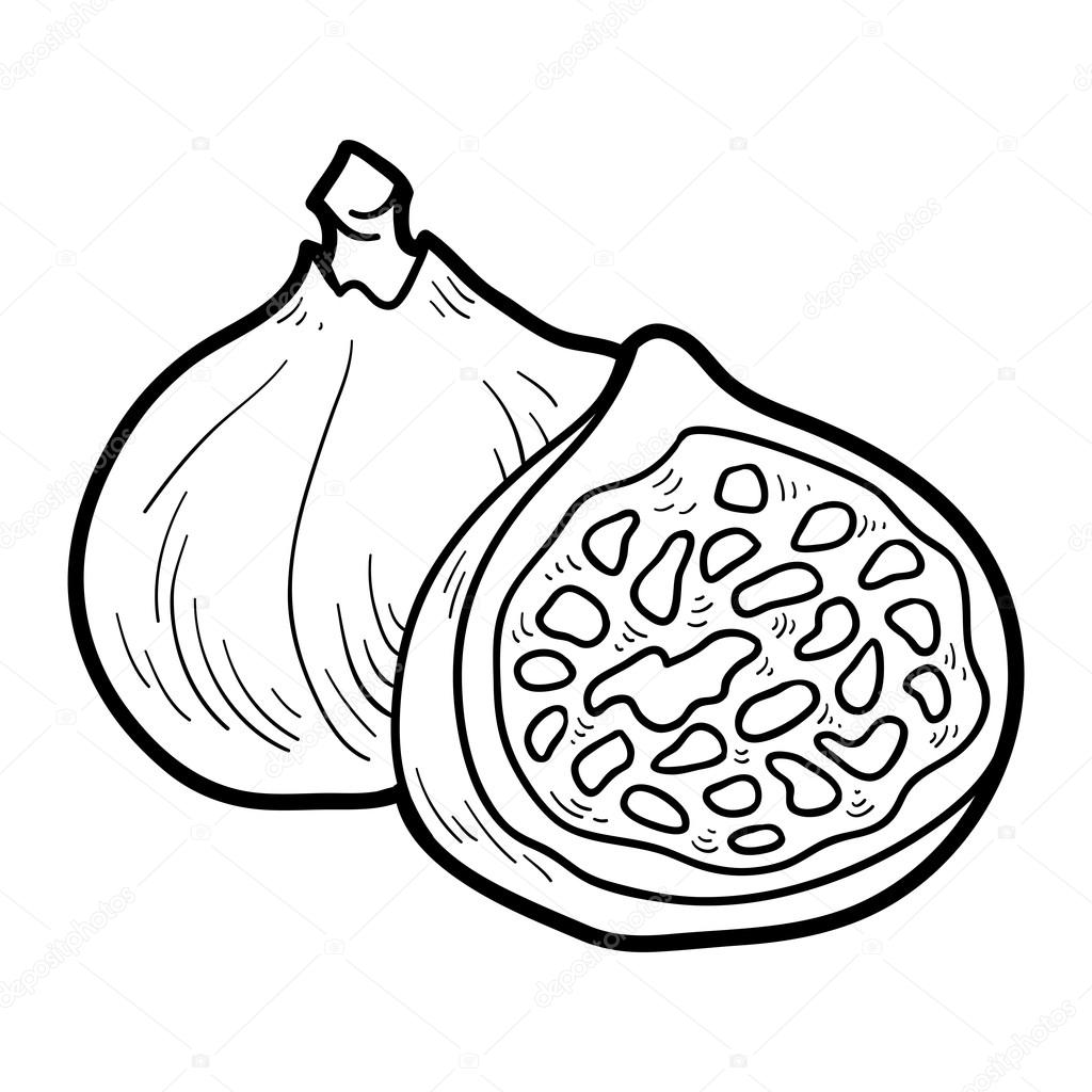 Coloring Book Fruits And Vegetables Figs