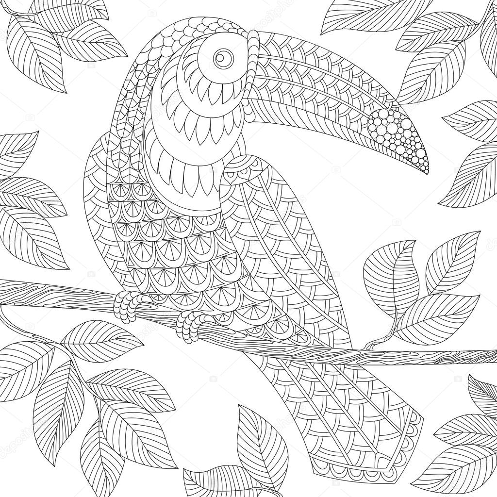 Toucan Adult Antistress Coloring Page