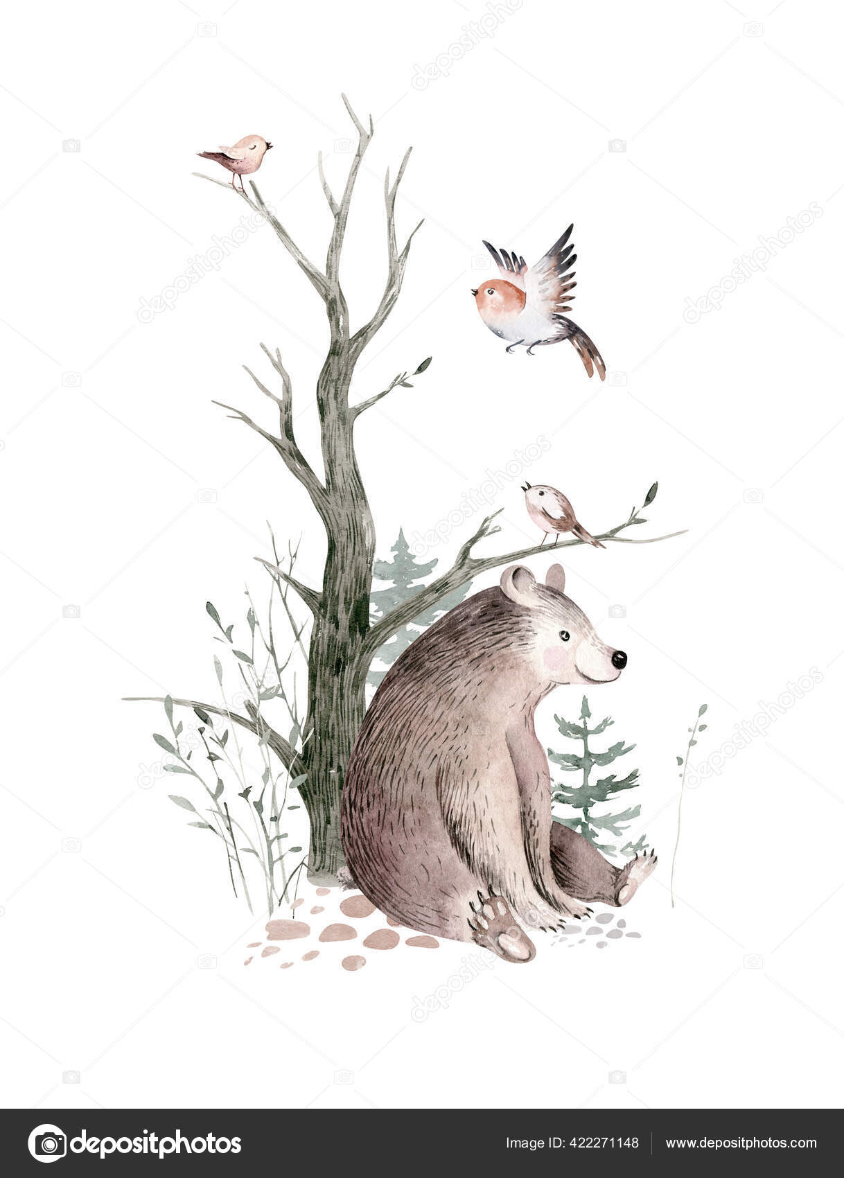 From choosing the furniture and color scheme to finding that most important of comfy chairs for late night feedings and cuddles, there are so many choices out there that it can be overwhelming for new parents. Woodland Watercolor Cute Animals Baby Bear Scandinavian Bear Forest Nursery Stock Photo By C Mykef 422271148