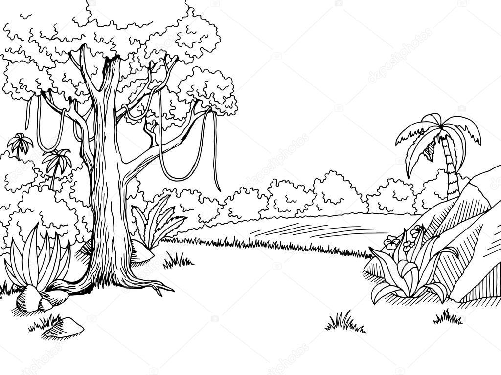 Selva Floresta Arte Grafica Preto Branca Paisagem Desenho