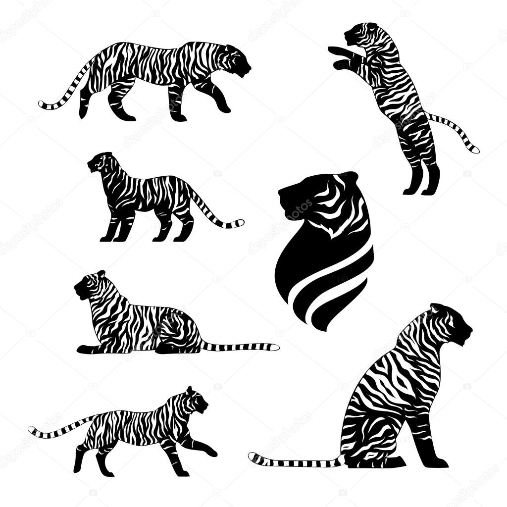Tiger Set Vector