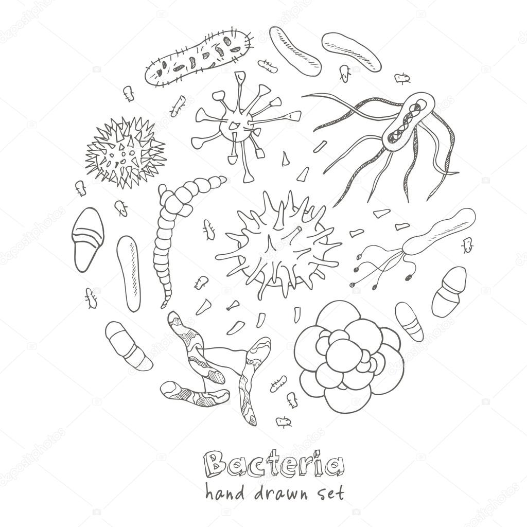 Bacteria Virus Icons Set Sketches