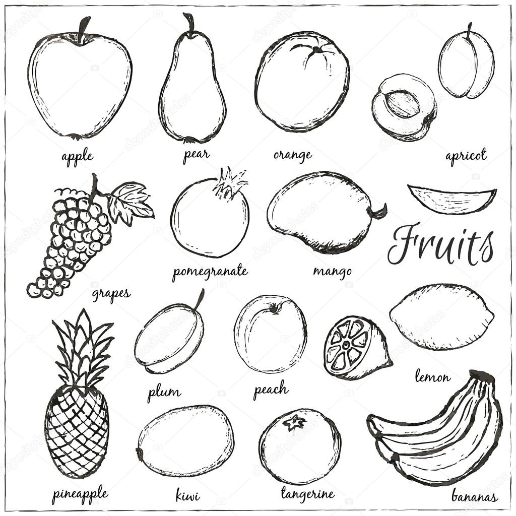 Pictures Fruits With Names