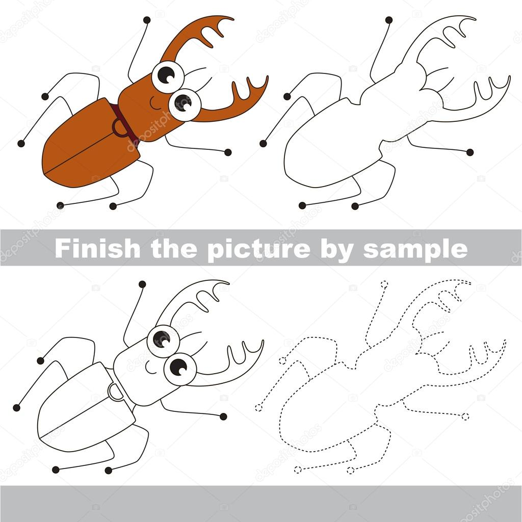 Pictures Insect To Draw