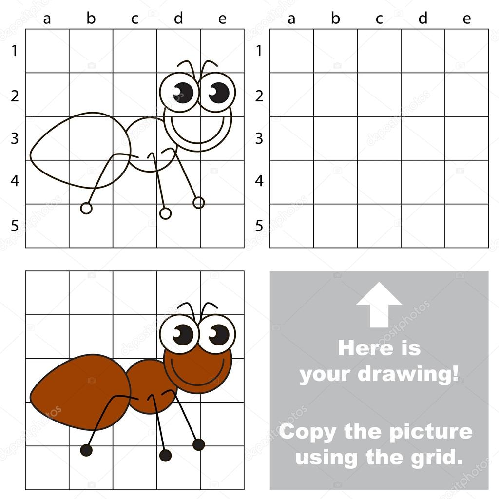 Copy The Image Using Grid The Ant