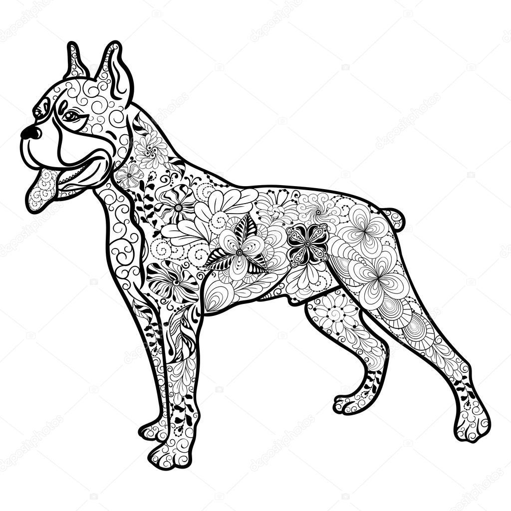 Boxer Dog Dog