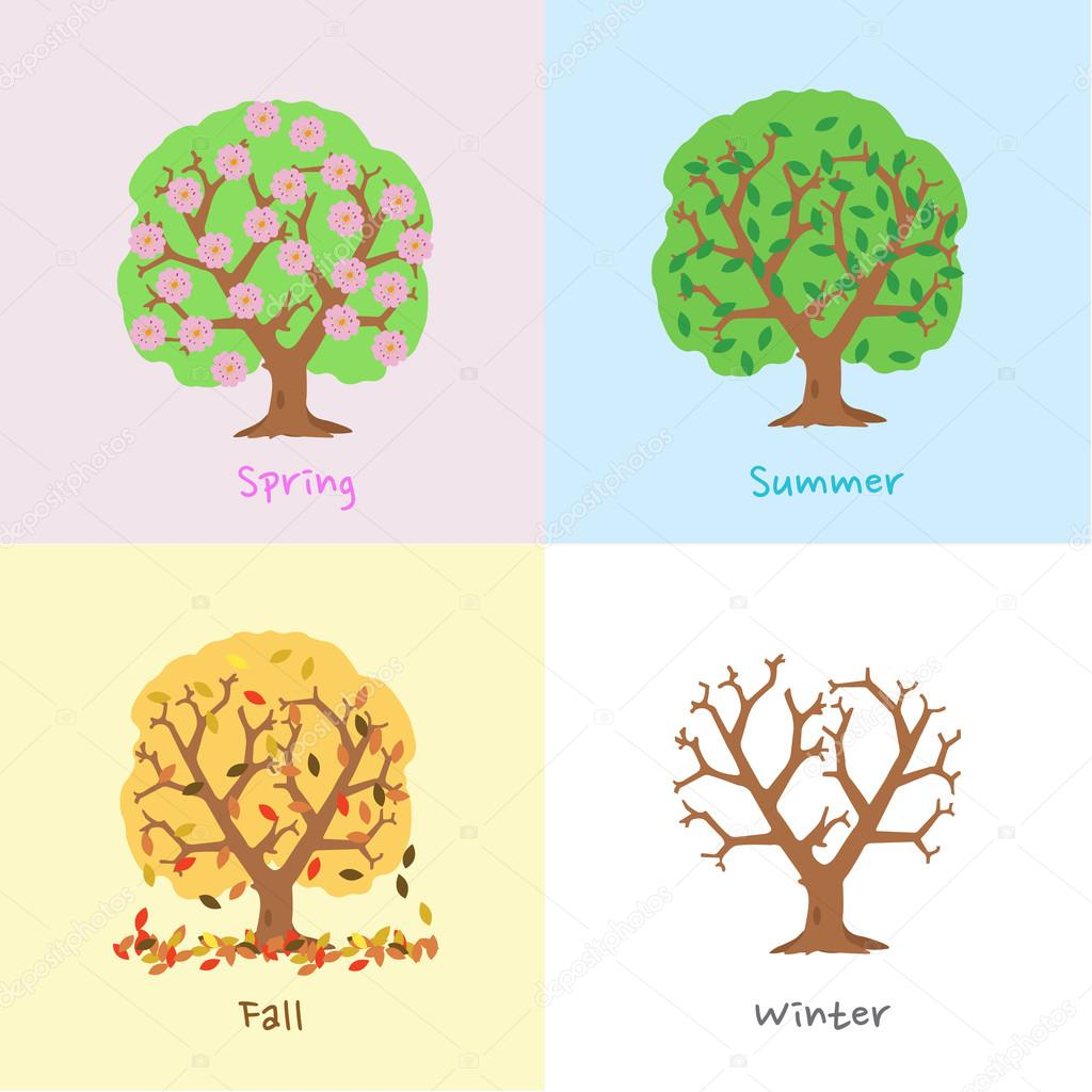 Pictures Of A Tree In Four Seasons