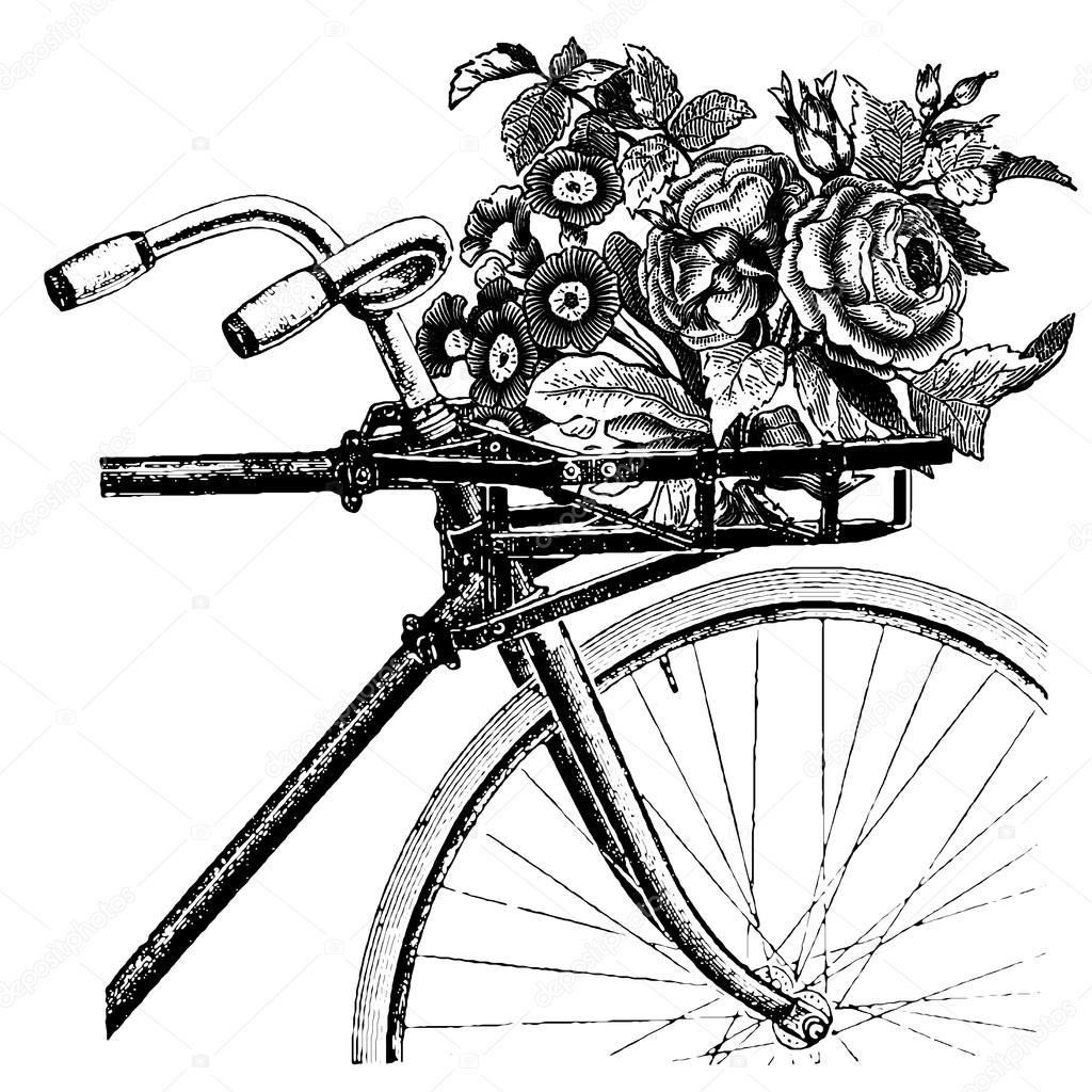 Bicicleta Dibujo Vintage