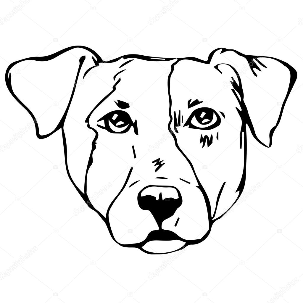 Graphic Vector Illustration Of Jack Russell Terrier Dog