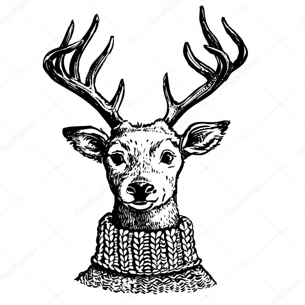 Ink Portrait Of Reindeer In Knit Sweater