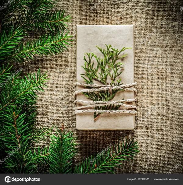 Подарочная коробка туя елка ветки на фоне упаковки ...